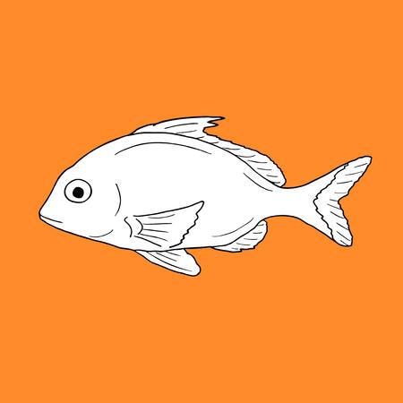 salmon fishery: Vector fish Illustration