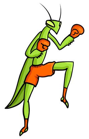 mantis: Praying mantis fighter Illustration