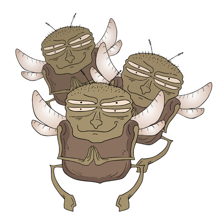 musca: Funny fly vector draw Illustration