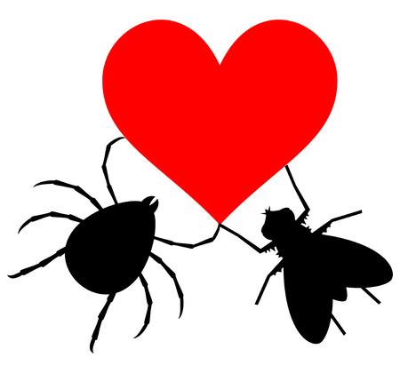 suitor: Insetti amore Vettoriali