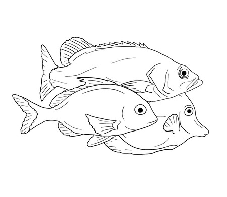 Draw Fish Stock Photos Royalty Free Draw Fish Images