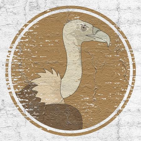 vulture: Old vulture