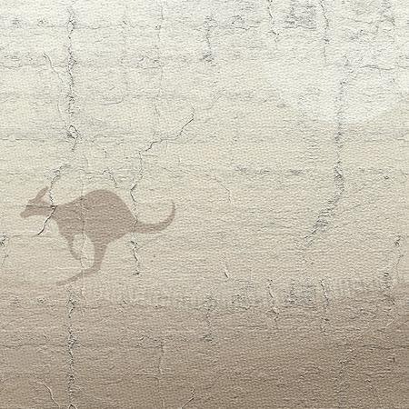 kangaroo: Cover kangaroo