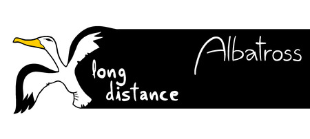 long distance: long distance message