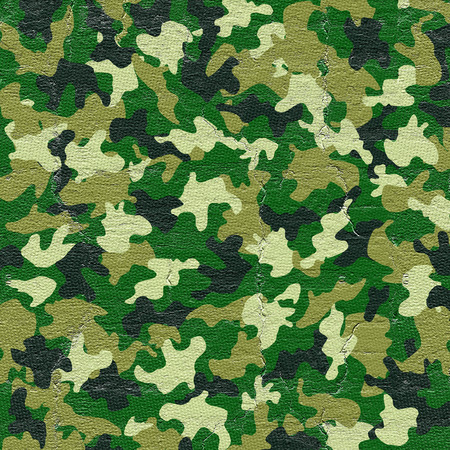 design visionary: Camouflage cover