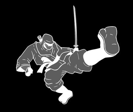 assassin: ninja fighter