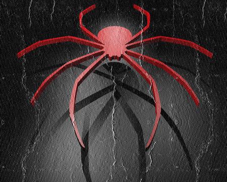 latrodectus: Red spider Stock Photo