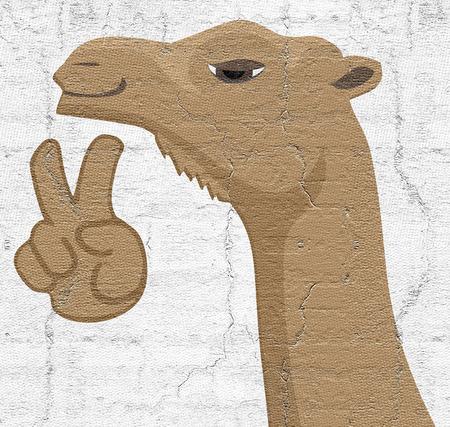 camello: Camello feliz Foto de archivo