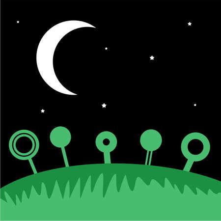 night: field night