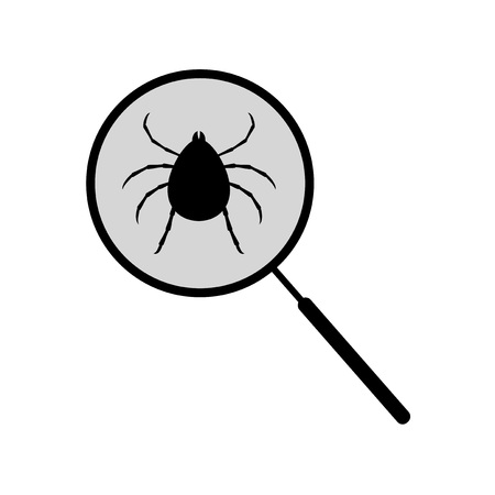bug's: search bugs