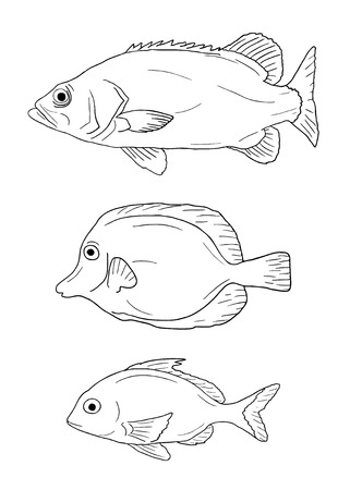 fishes: Three fishes