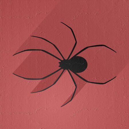 latrodectus: black spider