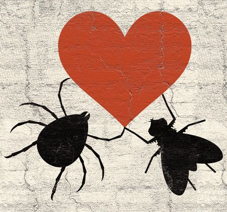 beau: Insects love