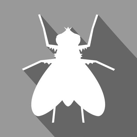 illustration: fly illustration Illustration