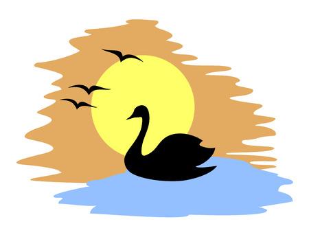bird fly: swan illustration