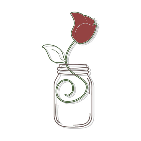 illustration: rose illustration