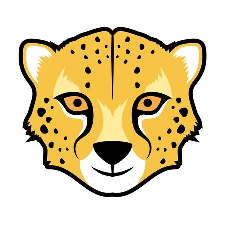 gepard: Gepard face