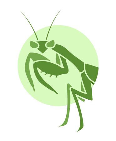 Creative mantis illustration Illusztráció