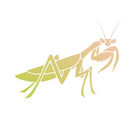 Creative mantis illustration Çizim