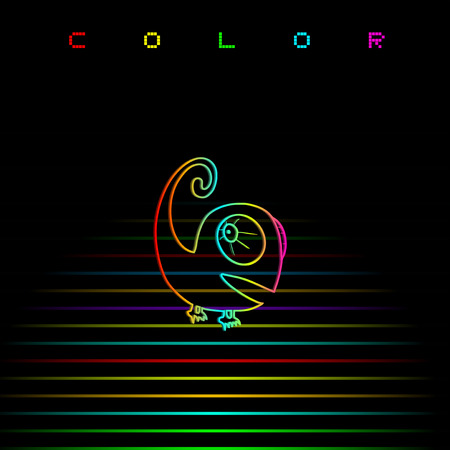 Colorful art chameleon