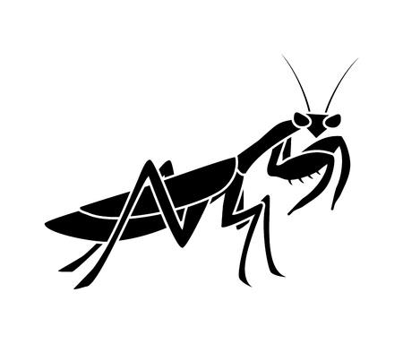Creative mantis illustration Vettoriali