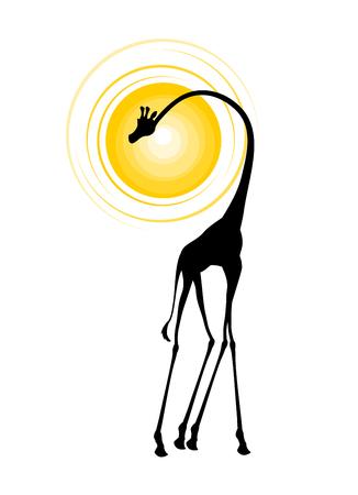 A african animal illustration isolated on plain background Illustration