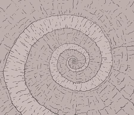 spiral rock way
