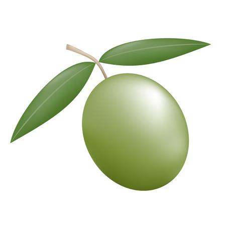 nature olive illustration Stock Illustratie