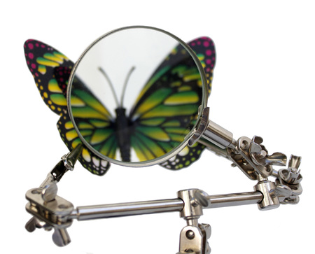 analysis of butterfly