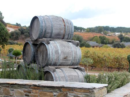 Old wood barrels detail