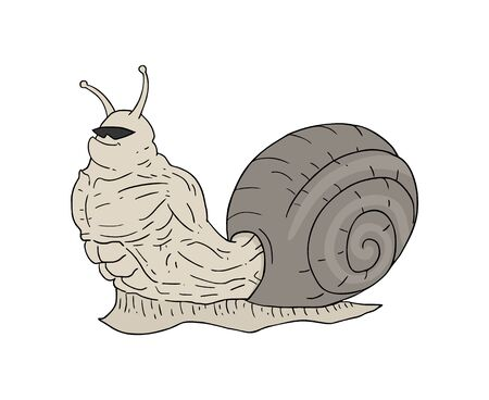 muscle snail draw