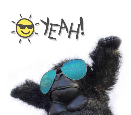 gorilla and yeah message Stok Fotoğraf