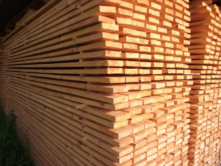 arbre: arranged boards in a sawmill