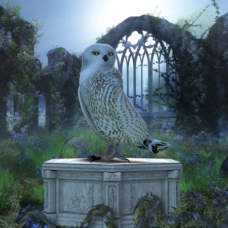 Owl bird sitting on a pedestal at night. 写真素材
