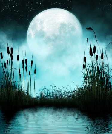 silhoutted: 3D rendering of a full moon and silhouettes of reeds reflected in a still pond at night. Stock Photo