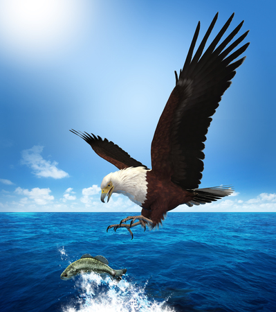 3D rendering of a glorious bald eagle hunting its prey, attacking a fish.