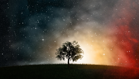 starry night: 3D illustration of a tree of life in front of a nightly sky, cosmos, full of stars. Stock Photo
