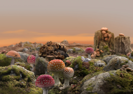 High detail fantasy scene of a magical fairy mushroom world landscape, 3d render