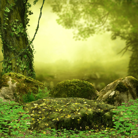 Magical fairy tale forest opening in the morning light, spooky, 3d rendering painting 写真素材