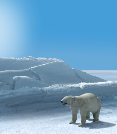 Ice bear hunting in arctic region on a sunny day, 3d render