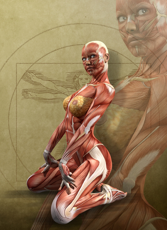 Muscle maps of a kneeling adult female, anatomy view, parchment background, 3d render