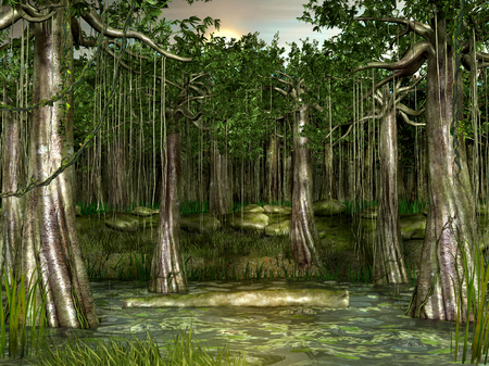 Swamp - forested wetland view during sunset, 3d render illustration