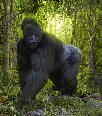 Dramatic scene of a Silverback Gorilla staring at the camera in the deep jungle, 3d render.