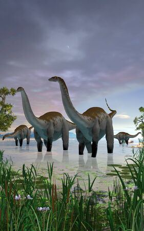 Concept of an Apatosaurus dinosaur herd in shallow water, 3d render