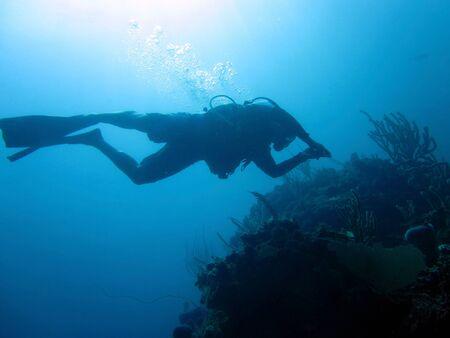 SCUBA diver down photo