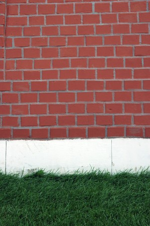Green grass against a red brick wall Stock Photo - 7532324