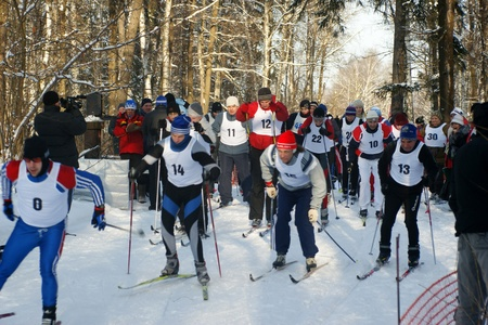 RUSSIA, MOSCOW - JAN 31: Sportsmen run on skis through winter wood Regional competitions on ski run January 31, 2009 in Moscow, Russia