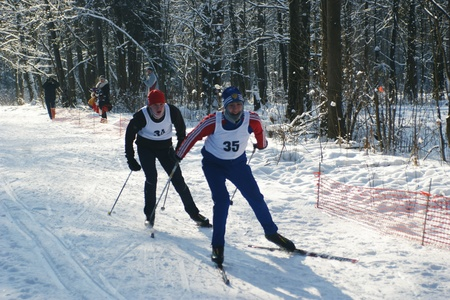 nordic country: RUSSIA, MOSCOW - JAN 31: Sportsmen run on skis through winter wood Regional competitions on ski run January 31, 2009 in Moscow, Russia Editorial