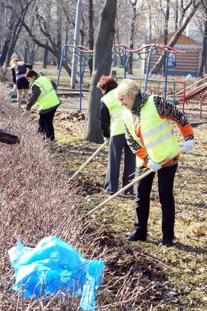 clean street: people clean fallen down leaves In park