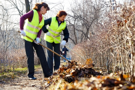 pile of leaves: people clean fallen down leaves In park